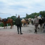 Groupe Dulieu - juin 2011 (2)